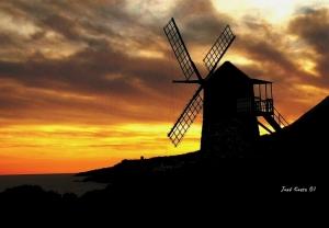 Paisagem Natural/Ao vento...