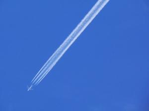 Paisagem Natural/Rasgando o Céu...