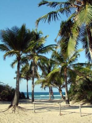 Paisagem Natural/Praia da Barra - Moçambique