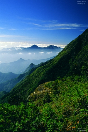 /High view of valley from Moier Point at Kodaikanal