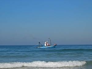 /Fisherman's struggle for life in a quiet sea day