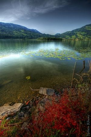 /Lago Suiço... .