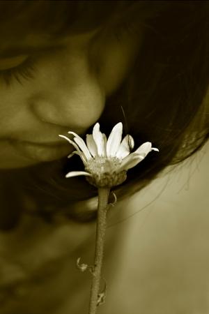 /Flowers II