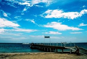Paisagem Natural/blue summer dream