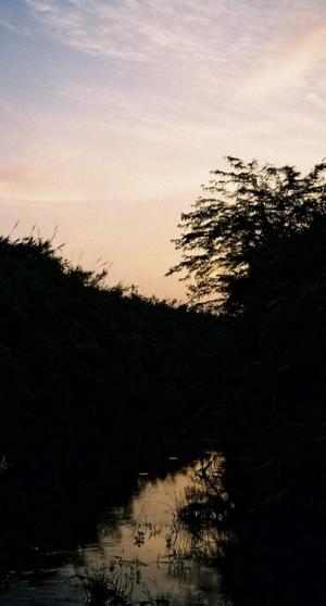 Paisagem Natural/Ribeiro Sombrio
