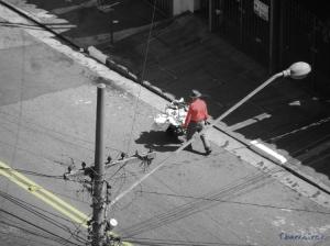 Gentes e Locais/Homem sobre Árvore Urbana