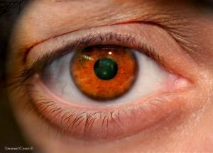 Retratos/Paradigma de um olhar!