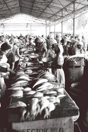 Outros/Mercado de Peixe - Angola 75