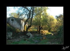 Paisagem Natural/A casinha dos Contos de Fadas...