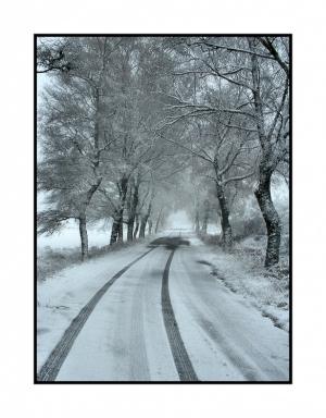 /Inverno