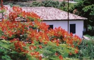 Outros/Fazenda Santa Luzia - Minas Gerais