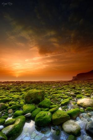 Paisagem Natural/Waiting for the sun (II)