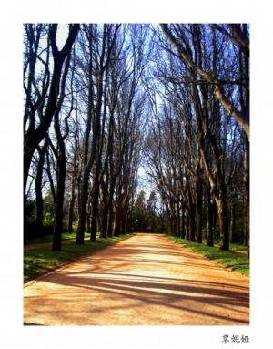/Por este caminho...