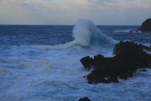 Paisagem Natural/Mar do Norte