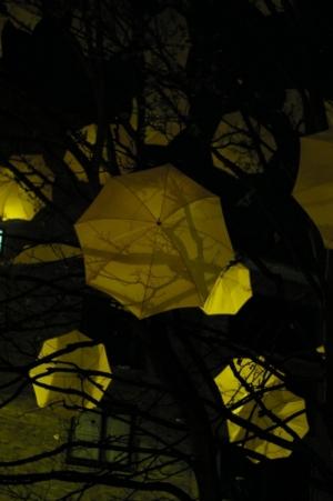 Outros/umbrella tree