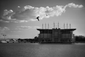 Paisagem Urbana/Oceanarium