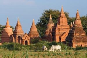 Paisagem Natural/Pagodas de Bagan