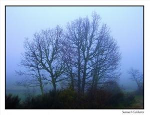 /O Nevoeiro I