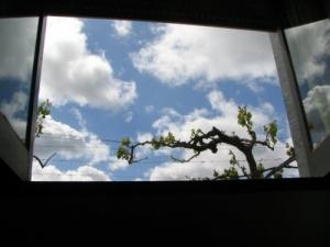 /História de uma janela