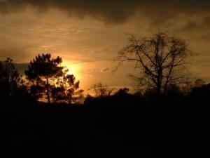 /Pôr do sol na margem do rio