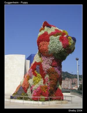 /Guggenheim - Puppy