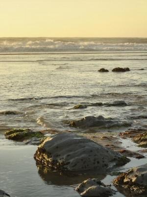 Paisagem Natural/Junto do Mar