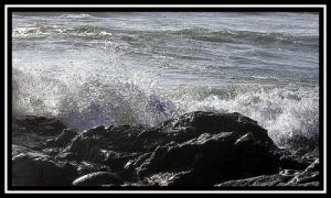 /Water Love II