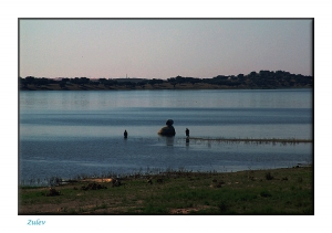 Outros/Pescando no Alqueva
