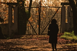 /Shadows of a woman at the gate