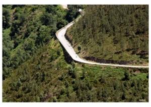 Paisagem Natural/Estrada do Marão