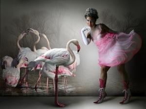 Moda/flamingo fashion