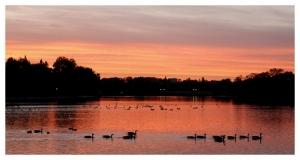 Paisagem Natural/Londres lago reposição