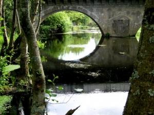 /Uma Ponte Esquecida