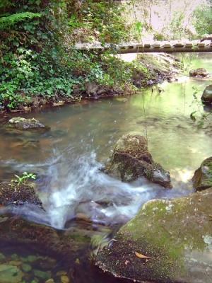 Paisagem Natural/Vale dos Pirilampos