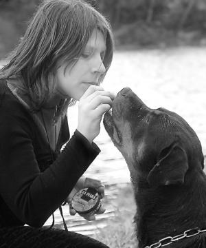 Animais/será um cão potencialmente perigoso?