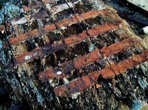 Abstrato/Caruncho madeira