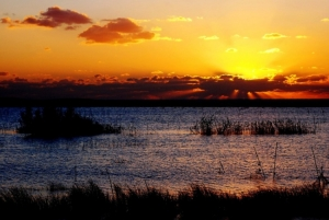 Paisagem Natural/Lagoa Sto. André - Santiago do Cacém