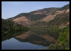 Paisagem Natural/Espelho no Douro