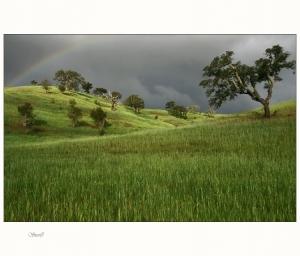 Paisagem Natural/Pintar um arco íris