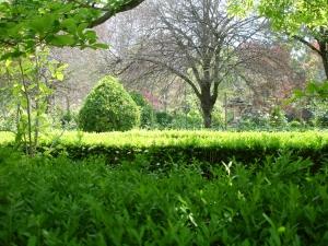 Paisagem Natural/Jardim Botânico da UC