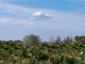 /Cloud # 9