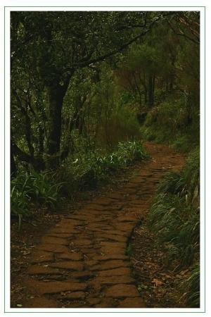 Paisagem Natural/Caminhos de Pedra...