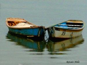 Paisagem Natural/Barcos de pesca