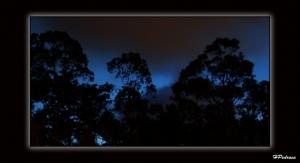 Outros/Blue Night