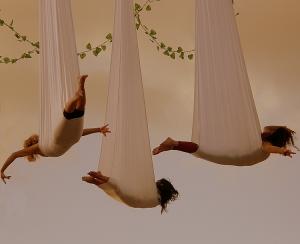 """Espetáculos/""""voalá"""""""