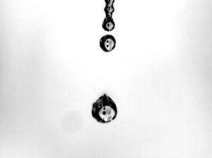 Macro/Liquid Glass I