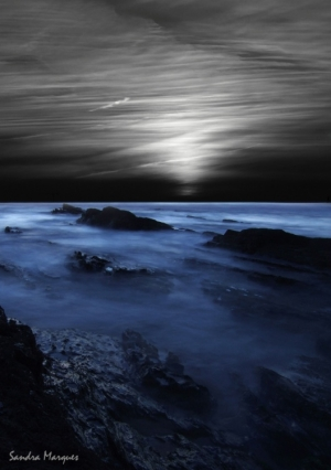 Paisagem Natural/Véus noturnos
