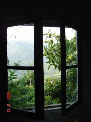 /Da minha janela...