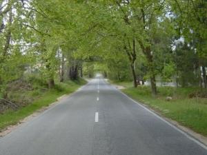 /A caminho de Nazaré