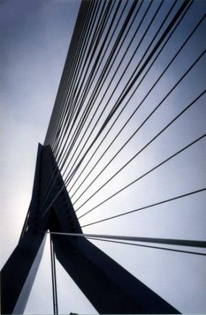 /Ponte de Roterdão